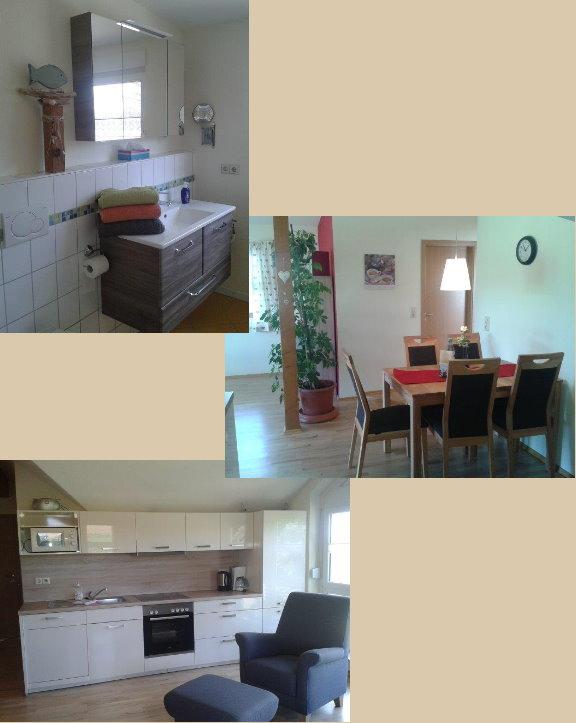 Wohn- und Essbereich mit Küchenzeile, Badezimmer